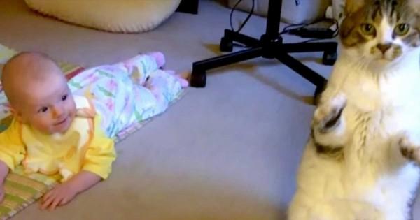 Η μαμά αφήνει το μωρό της στο χαλί και δείτε την φοβερή αντίδραση της γάτας! (Βίντεο)