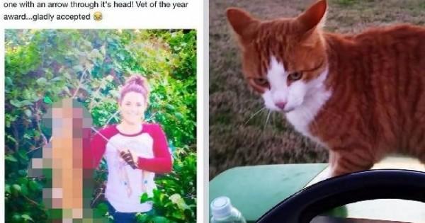 Κτηνίατρος σκότωσε γάτα με βέλος!