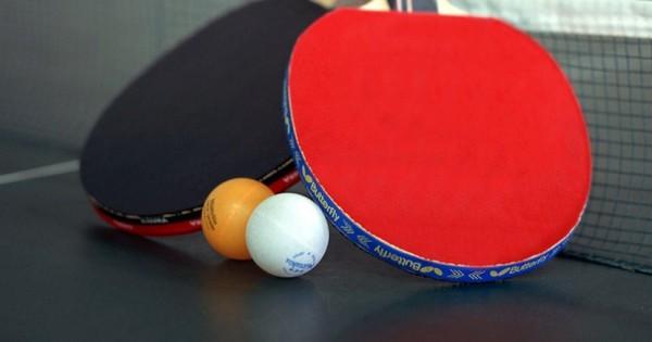 Ο σκύλος που παίζει ping pong (video)