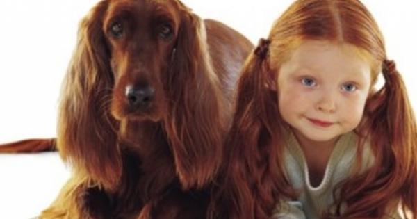 Δείτε τι δείχνει νέα έρευνα για τα σπίτια που έχουν σκύλο!