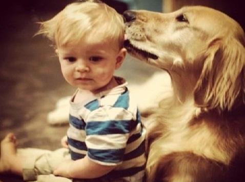 Σκύλος παιδιά παιδί
