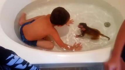 Αξιολάτρευτο βίντεο: Κάνοντας μπάνιο με μια μικρή μαϊμού