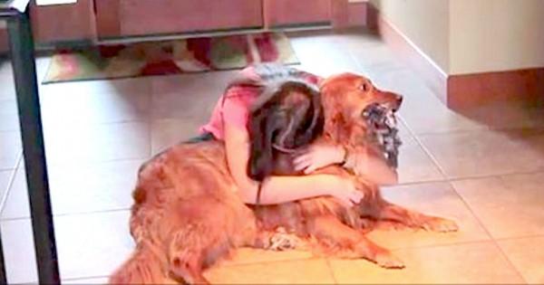 Ένιωθε άσχημα που άφηνε τον σκύλο της μόνο του πολλές ώρες, έτσι της ήρθε αυτή η πρωτότυπη ιδέα! (Βίντεο-Φωτογραφίες)