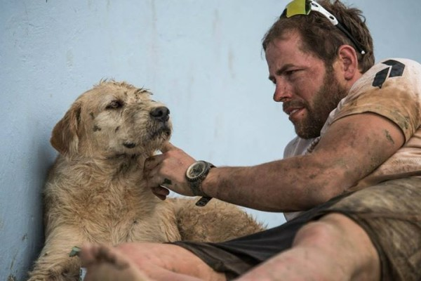 Σκύλος αδέσποτο Peak Performance Mikael Lindlord Arthur