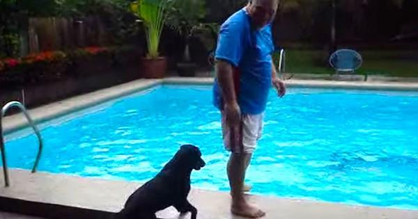 Στέκεται όρθιος δίπλα από την πισίνα. Δείτε όμως τι θα κάνει ο σκύλος από πίσω του! (Βίντεο)