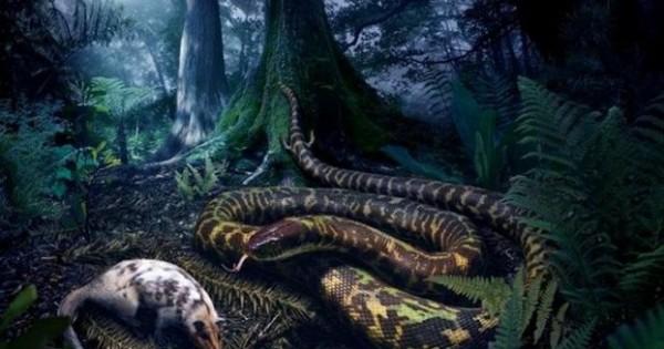 Τα πρώτα φίδια περπατούσαν!