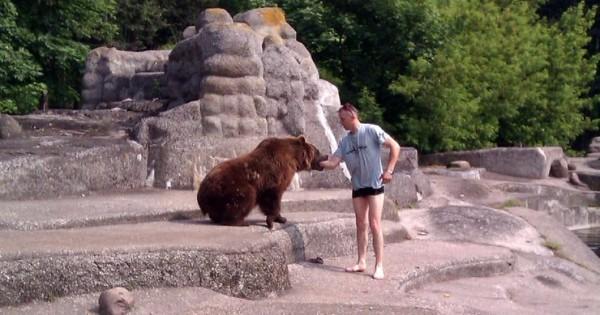 Σκαρφάλωσε και μπήκε στο κλουβί μιας αρκούδας (Εικόνες)