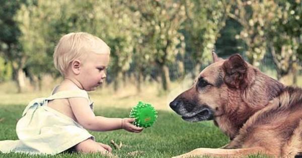 Η τέχνη της επικοινωνίας με τα ζώα