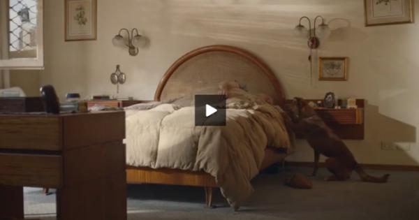 Ο άνθρωπος και ο Σκύλος: μια υπέροχη διαφήμιση από την Αργεντινή (βιντεο)