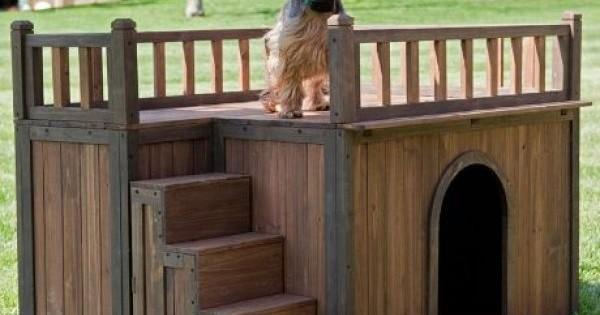 5 σπιτάκια σκυλιών πραγματικό… όνειρο!