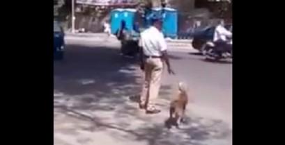 Αστυνομικός βοηθά ένα σκύλο να διασχίσει το δρόμο (Βίντεο)