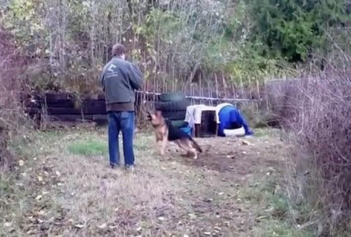 Αξίζει να το δεις! Αυτός ο σκύλος ήταν δεμένος σε όλη του τη ζωή! Δείτε τι έγινε μόλις τον ελευθέρωσαν!