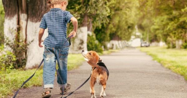 Παιδιά! 6 συμβουλές για αποφυγή δαγκώματος από σκύλο