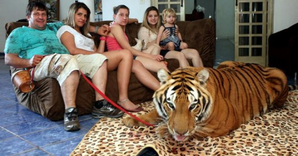 Οι πιο παράξενες… οικογενειακές φωτογραφίες με κατοικίδια!
