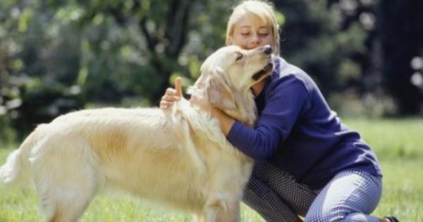 ΜΗΝ ΞΕΧΝΑΤΕ: Επιβραβεύστε την καλή συμπεριφορά του σκύλου σας!