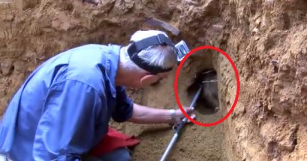 Άρχισε να τρυπάει την Γή και πετάχτηκε ξαφνικά αυτό το ζώο! (Βίντεο)