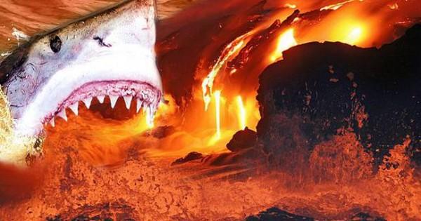 Πόσο πιο τρομακτικοί; Καρχαρίες ζουν μέσα σε… ηφαίστειο! (video)