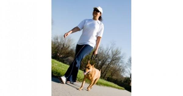 Οχτώ καλοί λόγοι να έχετε το σκύλο με το λουρί στη βόλτα