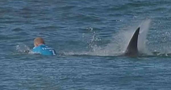 Συγκλονιστικό βίντεο: Καρχαρίας επιτίθεται σε διάσημο σέρφερ την ώρα που διαγωνίζεται (Βίντεο)