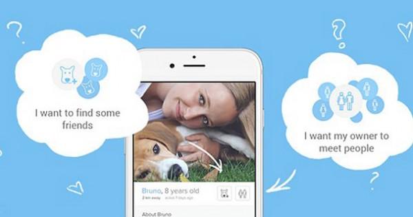 Νέα εφαρμογή γνωριμιών… για σκύλους και γάτες (Εικόνες)