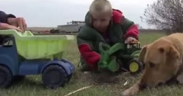 Αυτό το αγόρι είχε χαθεί, ένα μίλι μακριά από το σπίτι του. Δείτε τι έκανε ο σκύλος του! (βίντεο)