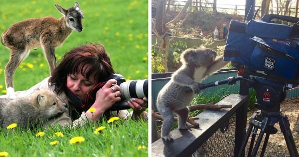 21 ζώα που θέλουν να γίνουν επαγγελματίες φωτογράφοι (Εικόνες)