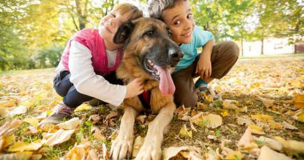 Με ποιο τρόπο οι σκύλοι προστατεύουν τα παιδιά από τις αλλεργίες