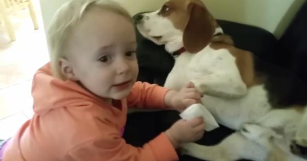 Μόλις δείτε τι κάνει αυτό το κοpιτσάκι με το σκυλάκι της, θα «λιώσετε»! (Βίντεο)