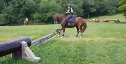 Διστακτικό άλογο πηδά ένα εμπόδιο (Βίντεο)