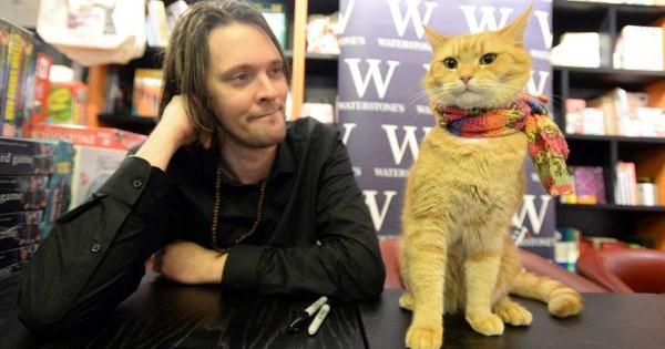 Αυτή η γάτα έσωσε τον άστεγο ιδιοκτήτη της από τα ναρκωτικά και τον έκανε μεγάλο συγγραφέα