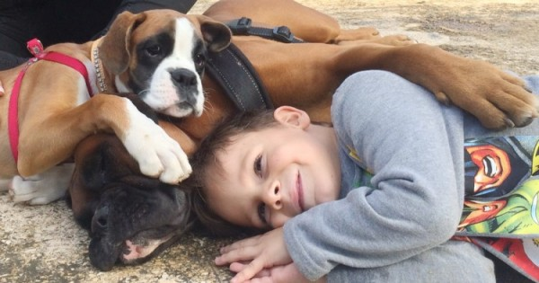Τα παιδιά που μεγαλώνουν με σκυλιά και γάτες είναι πιο ευφυή συναισθηματικά και πιο συμπονετικά