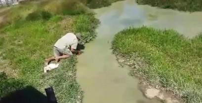 Μια τρομακτική έκπληξη στα νερά της Αυστραλίας (Βίντεο)
