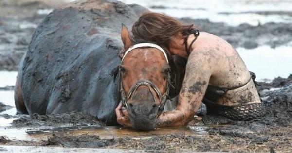 Ήταν απελπισμένη, το άλογό της πνιγόταν – Αυτό που έκανε όμως ήταν εκπληκτικό!