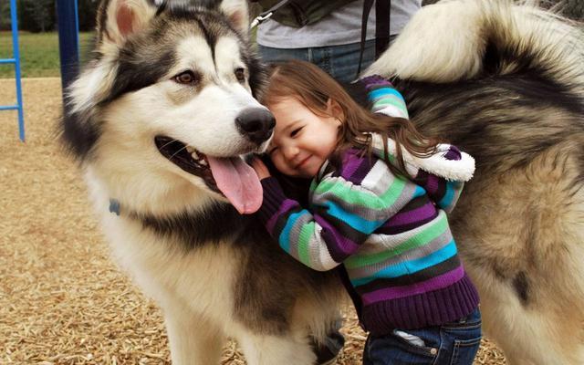 σκύλοι παιδιά έρευνα αυτισμός