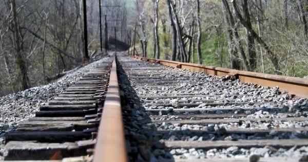 Σκοτώθηκε προσπαθώντας να απομακρύνει τον σκύλο του από τις γραμμές του τρένου!