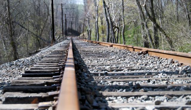 τρένο Σκύλος γραμμές τρένου