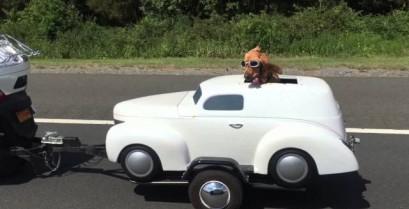 Βίντεο: Ο σκύλος έχει το δικό του αυτοκίνητο