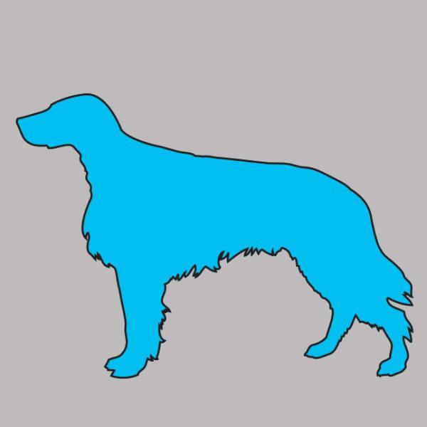 Σκύλος