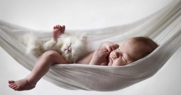Βρέφη: Ο ύπνος με τα κατοικίδια, τα προστατεύει από το άσθμα και τις αλλεργίες (Βίντεο)