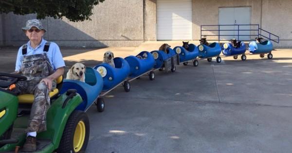 80χρονος κατασκευάζει τρενάκι για αδέσποτα σκυλιά και ξεκινούν μαζί το ταξίδι της περιπέτειας! (Βίντεο)