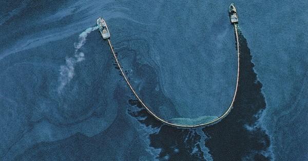 Αυτό που βρήκε σε μια πετρελαιοκηλίδα θα σας ραγίσει την καρδιά, αλλά η ελπίδα δεν είχε χαθεί εντελώς! (Εικόνες)