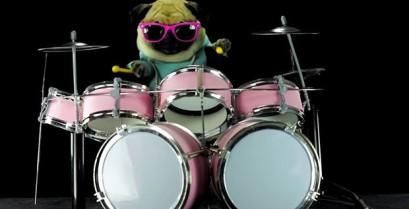 Ένας σκύλος παγκ παίζει Metallica στα ντραμς (Βίντεο)