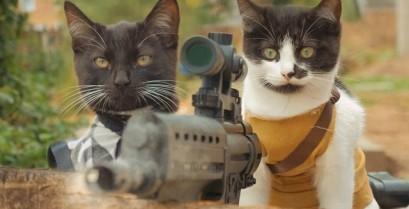 Γάτες εναντίον ζόμπι (Βίντεο)