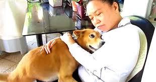 Αυτός ο άνθρωπος ήταν τόσο λυπημένος μέχρι που αυτό το σκυλάκι έκανε το πιο γλυκό πράγμα…(Βίντεο)