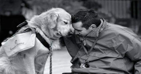 """Ο σκύλος σου σ"""" αγαπάει και σου το δείχνει (Εικόνες)"""