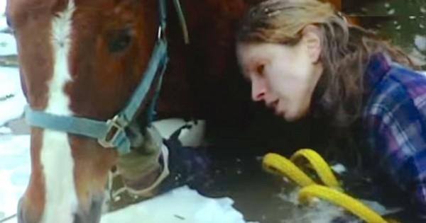 Έπεσε σε ένα φαράγγι με το Τυφλό άλογό της και δεν είχε καμία τύχη… Ένας σκύλος όμως, κατάφερε το ακατόρθωτο! (Βίντεο)
