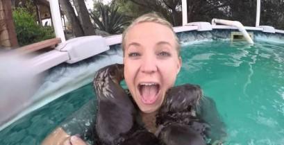 Μπάνιο παρέα με τις βίδρες (Βίντεο)