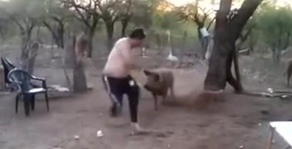Η μαμά γουρούνα προστατεύει το μικρό της (Βίντεο)
