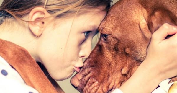 Θέλεις να μειώσεις τον κίνδυνο παιδικού άσθματος; Πάρε σκύλο!