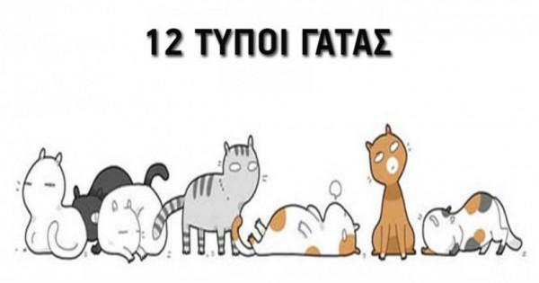 12 τύποι γάτας: Εσείς ποιον τύπο έχετε; (Εικόνες)